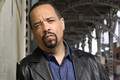 Ice-T (as Detective Odafin &quot;Finn&quot; Tutuola)