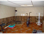 Home gym. Top of the line equipment