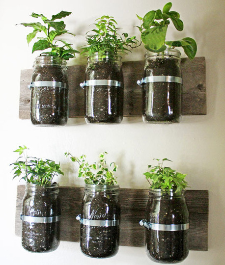 Try making canning jars mounted to the wall for your herbs