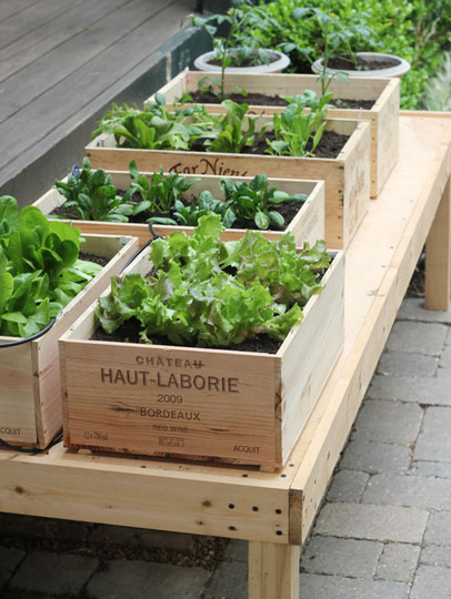 Check out these chic wine box planters that you can make yourself