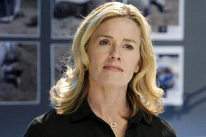 Elisabeth Shue (as Julie Finlay)