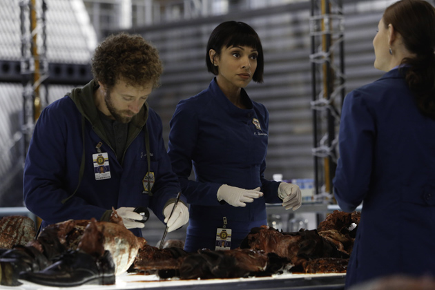 Hodgins, Cam, and Brennan examine remains that were found in a gorge under a bridge