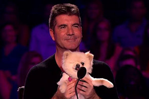 Meet Simon Cowell