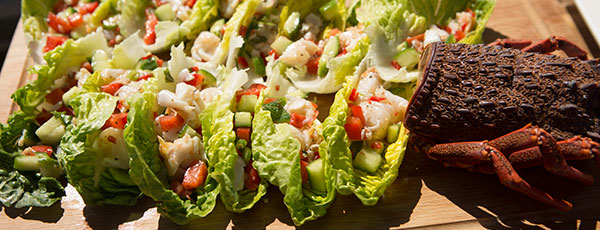 Flora and Jasmine's Lobster Salad