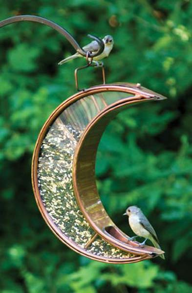 A cute crescent moon feeder for birds to perch on