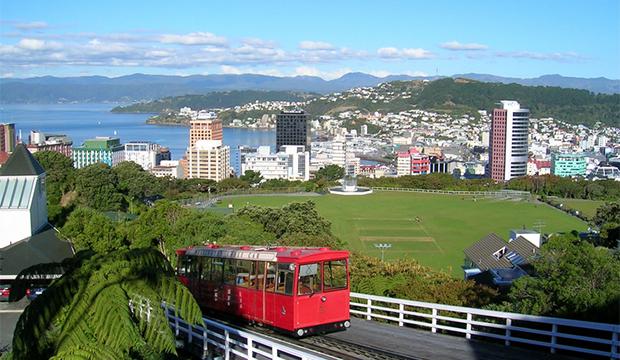 Wellington, The Great Food Race