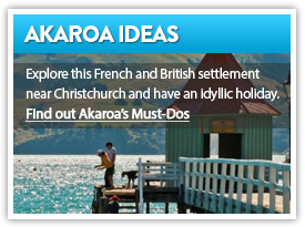 Find out Akaroa's Must Dos