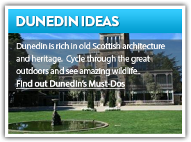 Find out Dunedin's Must Dos